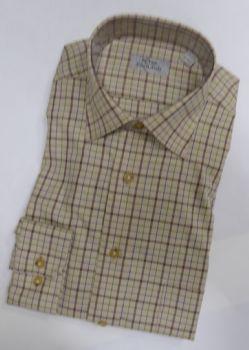 Peter England Shirt PE7449032